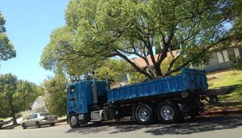Hauling Demolition, Trash Pick-up. Bin Rental