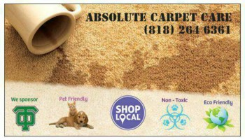 Absolute Carpet & Upholstery Cleaning/Non-Toxic. Living Room $50