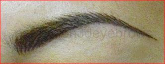 Perfection 3D Eyebrows