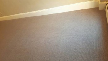 ALPHA CARPET - SERVICES