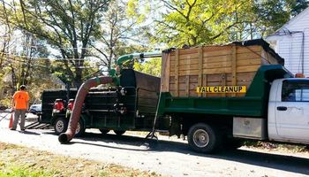 Fall Cleanup. WillsLawns