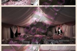 TABLES, CHAIRS, LINEN DECORATIONS, CANOPIES, BALLONS. LOW PRICES!