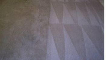 Holiday special professional carpet & upholstery cleaning.