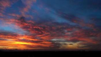 French Tutoring - ASU / Tempe & Scottsdale, MCC / Mesa