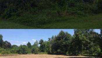 LAND CLEARING/ EXCAVATION/ GRAVEL ROADS/ DEMOLITION