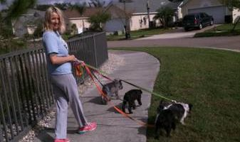 AFFORDABLE Pet Sitting + Hunters Creek and Kissimmee/Disney