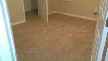 CARPET AND INSTALL .99 SQ FT. HAVE YOUR OWN CARPET? INSTALL .50 SQ FT