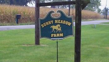 Sunny Meadow Farm. Horse boarding