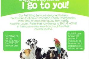 Happy to Stay Home Pet Sitting Service