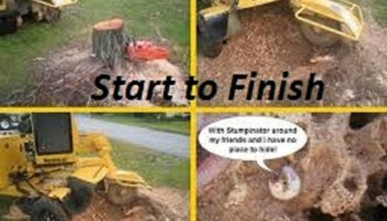 Denton's STUMP GRINDING AND REMOVAL