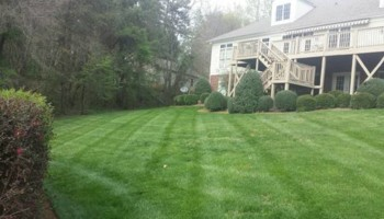 25% off Commercial or Residential Yearly Lawn Maintenance Agreements