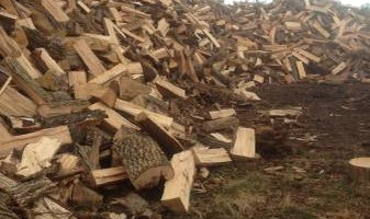 HOOVERS TREE SERVICE/ FIRE WOOD - ASH, OAK, HICKORY, MAPLE