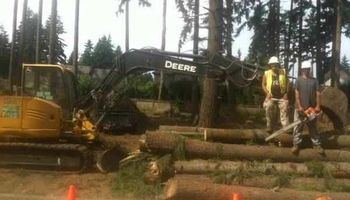Land Clearing Services 35% Off Free Estimate