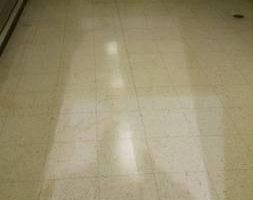 STRIP & WAX ,TILE & GROUT CLEANING