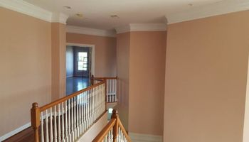 House Painting Contractor (AWESOME PRICES)