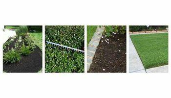 Professional Mowing Service. Shrub/palm/hedges/tree limbs trim. Mr. EdM