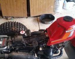 Professional motorcycle mechanic