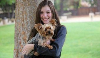Bay Area Dog Training