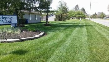OneLove Lawn BBB A+ rating Veteran Owned and Operated