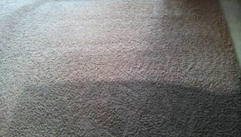 CARPET CLEANING! ROTOVAC 360!