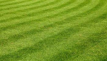 Andersen Lawn Care