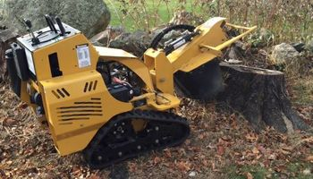 Powers Outdoor Services. Stump Grinding