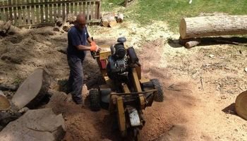HONEST & RELIABLE STUMP GRINDING