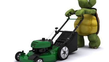 TURTLE'S LAWN CARE / IRRIGATION SHUT DOWN