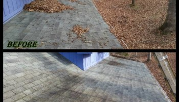 LEAF REMOVAL AND GUTTER CLEANING