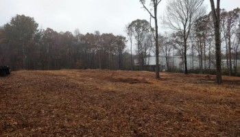 Forestry mulching/Land clearing