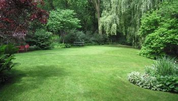 Mid Tn Landscaping and Lawn Care Services