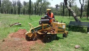 K WEST TREE SERVICE