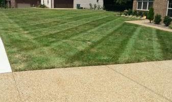 Lawn care Service. Call for season of 2016!