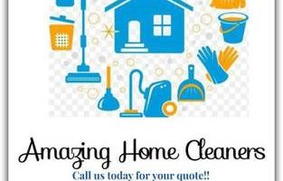 Amazing Ellen's Home Cleaners - cleaning & organizing