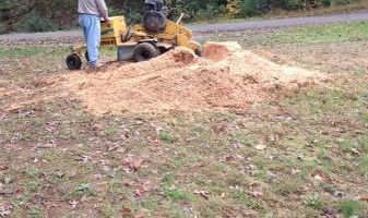 Hughes Tree and Stump Removal