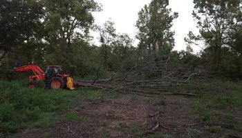 Phelps Land Restoration. Land Clearing and Logging Cleanup