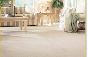 1st Class Carpet Steam Cleaning