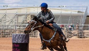 Barrel Racing/ Riding Lessons