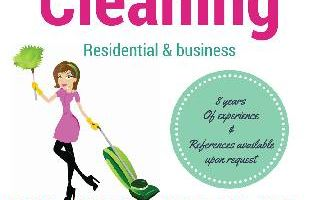 Above and Beyond House Cleaning by Chelsea Loveland
