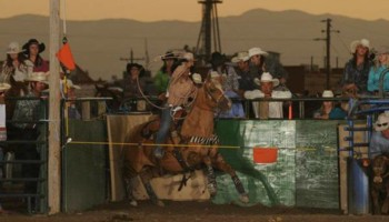 Riding/roping/daubing lessons