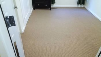H o w e l l s Damn Good Carpet Cleaning - High Quality. TODAY ONLY: 50% OFF