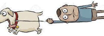 Dog Runner Tyler