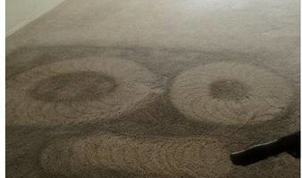 Professional Wonago Carpet Cleaning at Reasonable Rates!