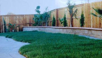 NT Landscaping & Gardening