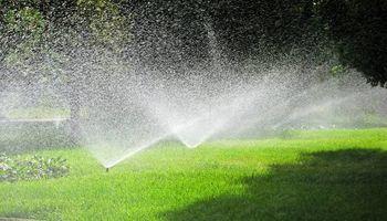 Lawn & Yard Services