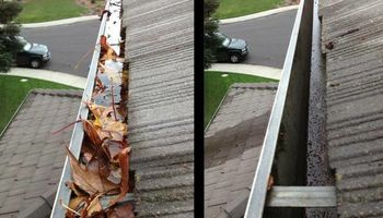 Gutter cleaning $55 by Paul