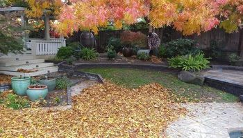 LOW COST YARD MAINTENANCE SERVICES. FREE ESTIMATES!