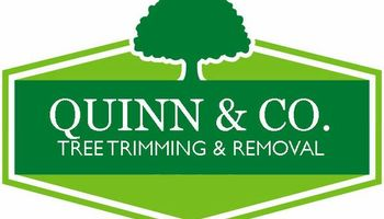 TREE TRIMMING & TREE REMOVAL... Fast, Local & Reliable.