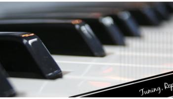 Gino Cicchetti Piano Technician