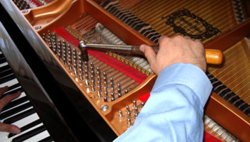 Piano Tuner. VOICING,  ADJUSTMENTS AND REPAIRS.